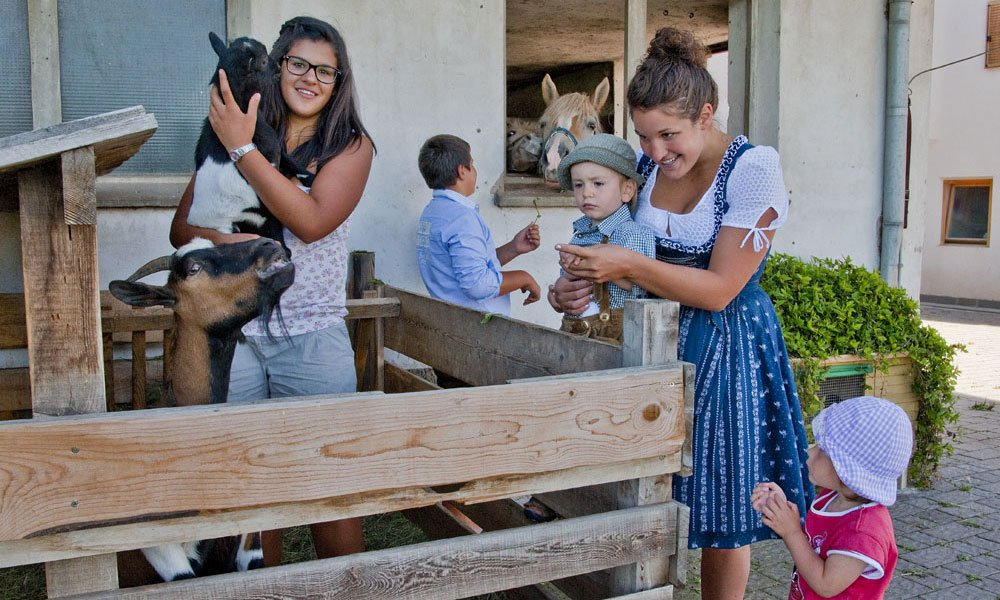 Farm holiday South Tyrol: Home of cordiality & hospitality