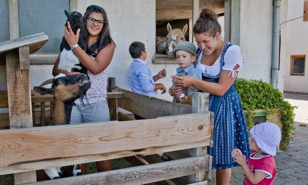 Vacanze in agriturismo Alto Adige: cordialità ed ospitalità