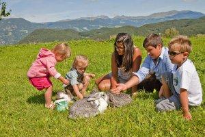 Farm holidays Castelrotto 3