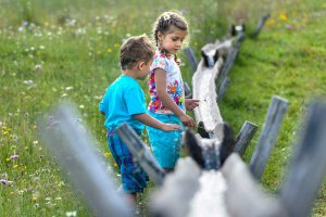 Holidays with children in South Tyrol 1