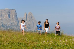 Holidays with children in South Tyrol 6